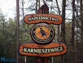 Trasa - zBiegiemNatury w Nadleśnictwie Karnieszewice 2013